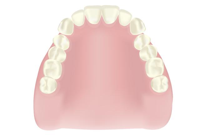 入れ歯の作成、調整